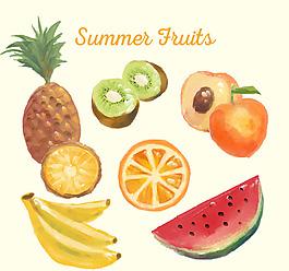 水彩繪水果矢量