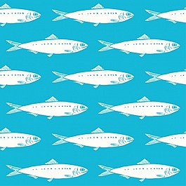 魚的圖案設計