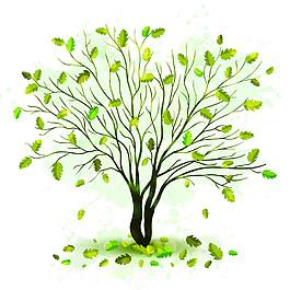 落葉和綠樹圖片