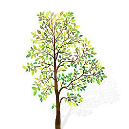 小樹綠葉樹圖片