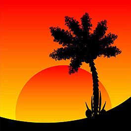 椰樹與太陽圖片