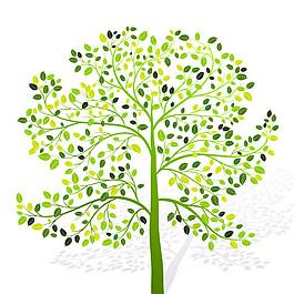 枝條綠葉樹圖片