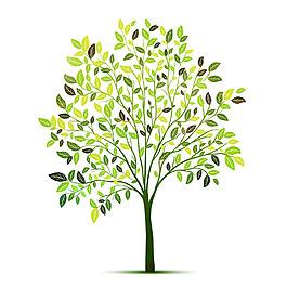 枝條綠葉樹圖片1