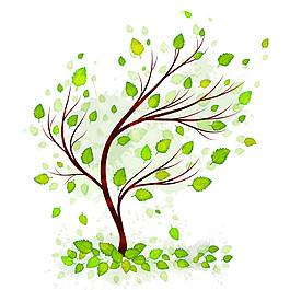曲線綠葉樹圖片