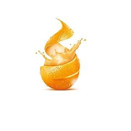 矢量橙子水果元素