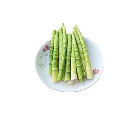 新鮮竹筍元素