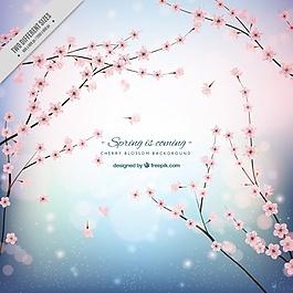 櫻花背景閃亮的形狀