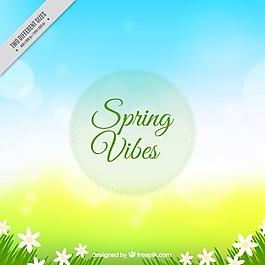背景虛化的背景與春天的花朵
