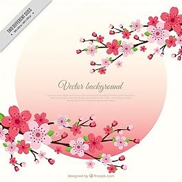 樱花枝的背景