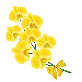 黄色的花设计