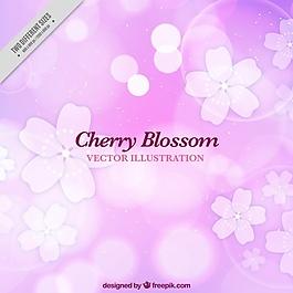 櫻花明亮的背景