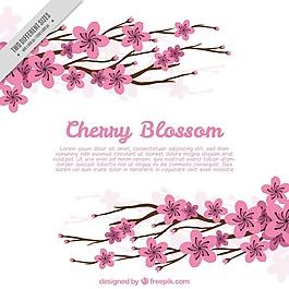 櫻花枝的背景
