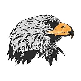 鷹頭背景設計