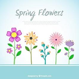 美丽春天花的背景