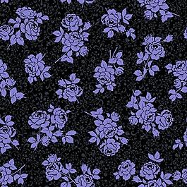 紫色玫瑰背景