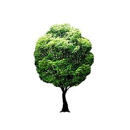 绿色清新大树元素