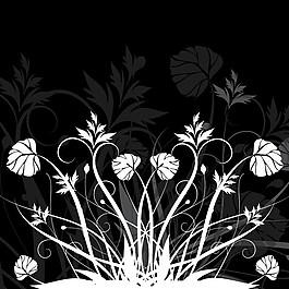 黑白花背景