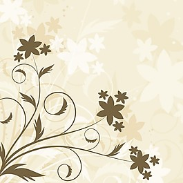 可爱的花的背景