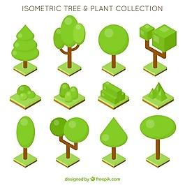 按等距方式排列的樹木和植物
