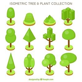 按等距方式采集樹木和植物
