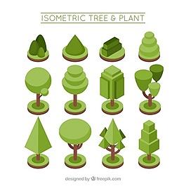 按等距方式收集植物和樹木