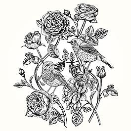 黑白复古玫瑰花