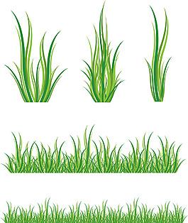绿色的小草