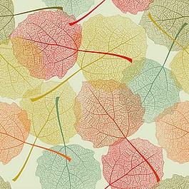 彩色漂亮叶子矢量图