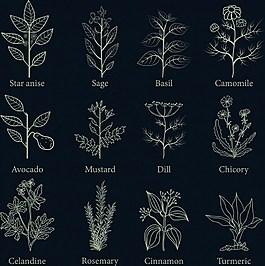 手绘鲜花植物背景图