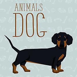 腊肠卡通狗狗宠物展示矢量素材