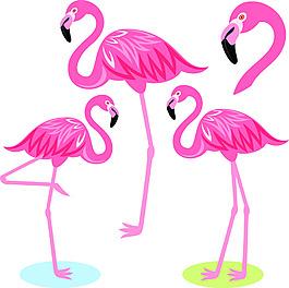 粉色卡通手繪火烈鳥矢量素材