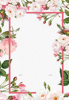 白粉色花朵线条边框广告背景