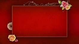 花生长红色方框视频