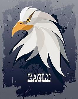 老鷹白色頭背景圖