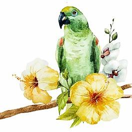 手繪鸚鵡和花朵