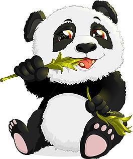 吃竹葉的熊貓圖片