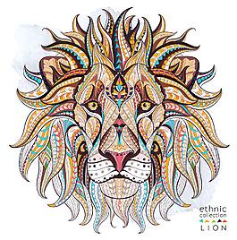 精美动物狮子插画