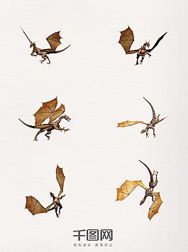 飛龍團=圖案裝飾元素