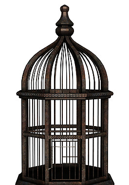 古典深铜色鸟笼产品实物