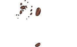 可可咖啡豆实景png元素
