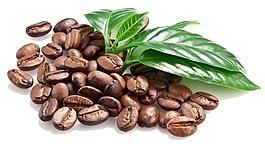 可可咖啡豆png元素