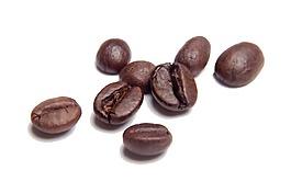 可可豆png元素