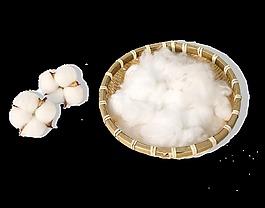 竹筐白色棉花png免扣素材