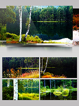 4K延時攝影日本御射鹿池美景