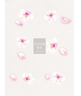 粉色花和花瓣设计素材ai矢量元素