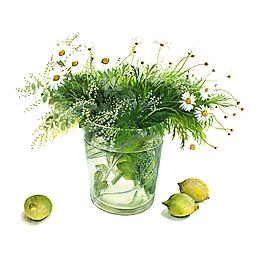 手繪盆景插在水瓶的小花小草元素
