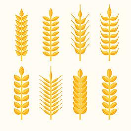 8款金色小麥合集設計