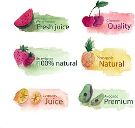 水彩绘水果插画