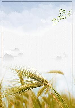 夏季小滿節氣小麥柳葉邊框海報背景設計