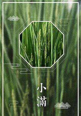 夏季綠色小滿節氣小麥海報背景設計